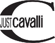 just cavalli - Just Cavalli  eyeglass repairs